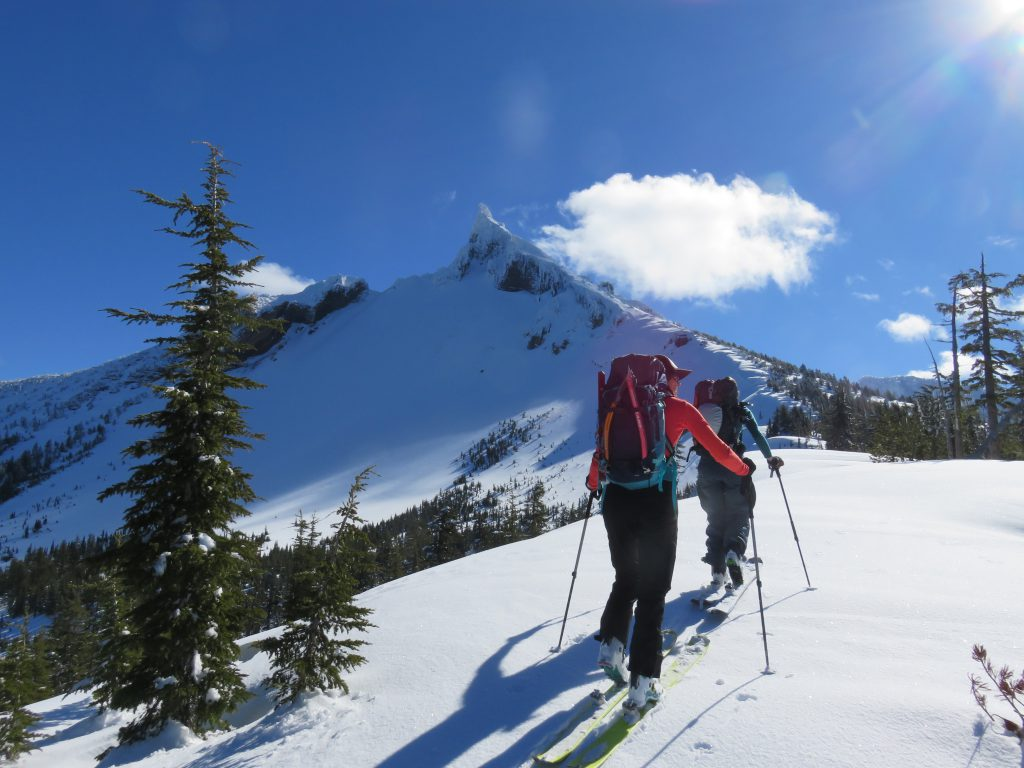 BackCountry-Access-BCA-Snow-Study-kit-review-dirtbagdreams.com